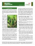ND & Northern MN Walking Your Fields newsletter-July