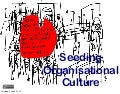 Xp2013 Seeding New Organisational Culture