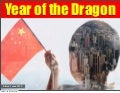 Year of the dragon 1.0