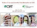 Status of Cassava Genetic Transformation at CIAT.