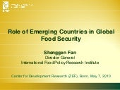 Role of Emerging Countries in Globa...