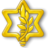 IsraelDefenseForces