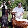 goat 39 s milk