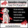 Speedpro Imaging Saint Paul