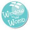 WindowToTheWombReadi