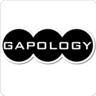 Gapology Institute