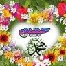 Hammou Mohammed