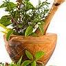 Homeopata Natural