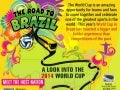 The Road to Brazil: A Look into the 2014 World Cup