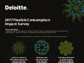 2017 Flexible Consumption Impact Survey