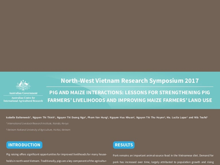 Pig And Maize Interactions Lessons For Strengthening Pig Farmers Li