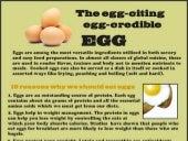 Eggciting eggcredible eggs