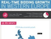 HiMedia the european rtb infographic 2013