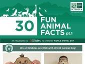 Infographic - World Animal Day - 30 Fun Animal Facts pt 1