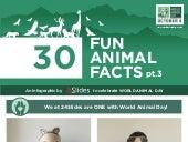 Infographic - World Animal Day - 30 Fun Animal Facts pt. 3