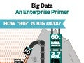 "How ""Big"" is Big Data?"