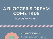 Wordpress plugins - A Blogger's Dream Come True (Infographic)