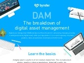 What is a digital asset and what is digital asset management?