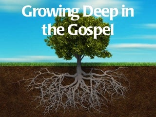 01. Why is the Gospel Important?
