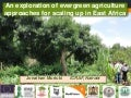 An exploration of evergreen agriculture approaches for scaling up in East Africa
