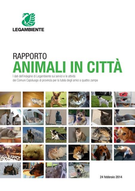 Rapporto Animali in città 2014