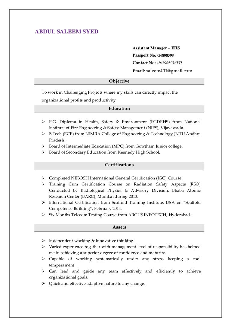 Saleem resume ehs 1betcityfo Image collections