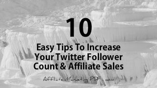 10 Quick Tricks To Increase Twitter Followers And Affiliate Income