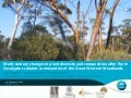 Suzanne Prober_Multi-century changes in plant diversity and composition after fire in Eucalyptus salubris communities of the Great Western Woodlands