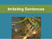 Imitating Sentences: A Tool for Better Sentence Writing