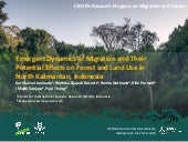Emergent dynamics of migration and their potential effects on forest and land use in North Kalimantan, Indonesia