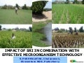 0727 Impact of SRI in Combination with Effective Microorganism Technology