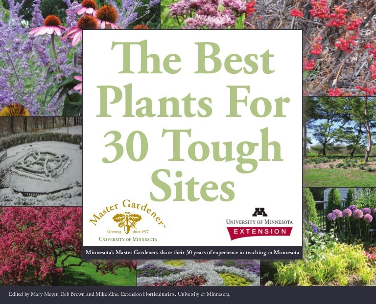 The Best Plants For 30 Tough Sites University Of Minnesota