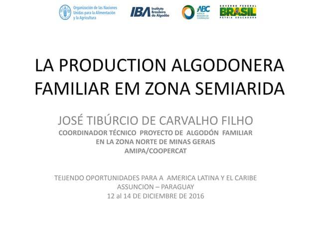 Proyecto Algodón Siempre Catuti – José Tiburcio