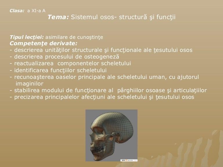 osificarea articulațiilor)