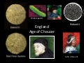 1. F2013 Age of Chaucer - Introduction