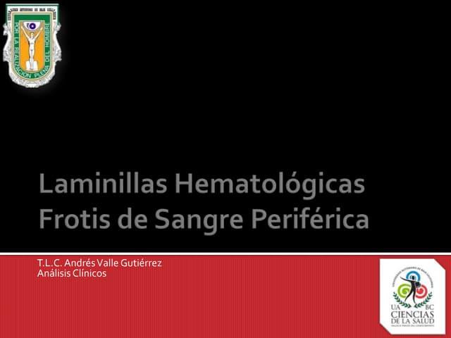 1.4. Laminillas hematológicas