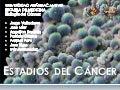 1.5 estadios del cáncer