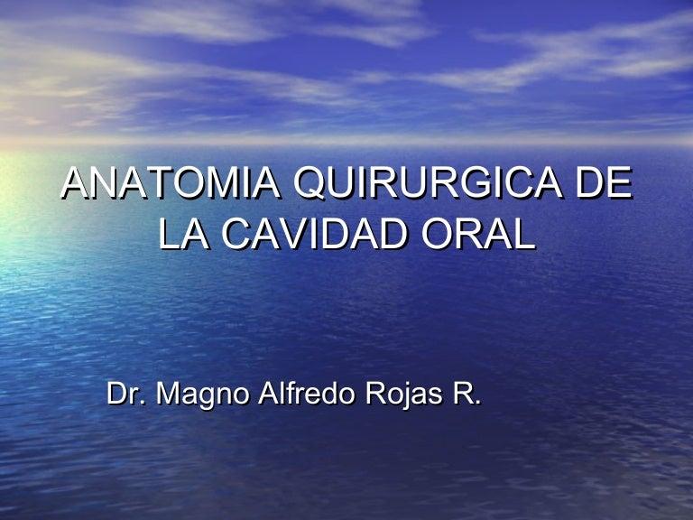 Anatomia quirurgica de la cavidad oral