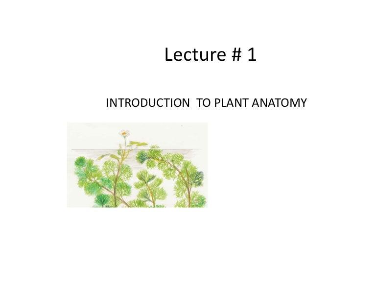 Lesson 1 bio101 (c)Dr. Evangelista