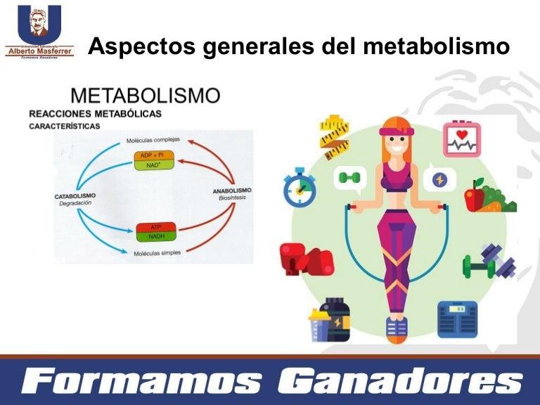 Aspectos generales del Metabolismo