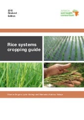 Rice Systems Cropping Guide