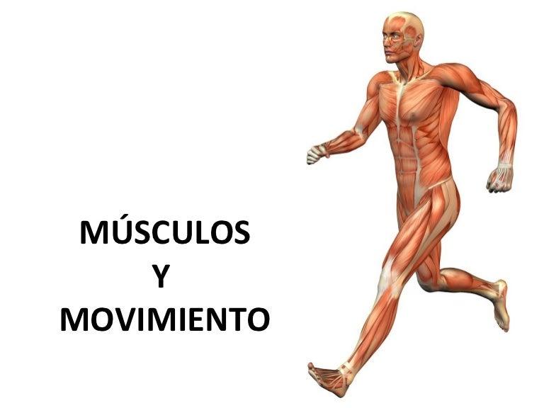 11.2.Músculos y movimiento