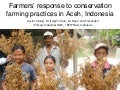 Farmers' response to conservation farming practices in Aceh, Indonesia. Gavin Tinning
