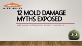12 Mold Damage Myths Exposed