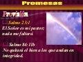 13. promesas de la palabra