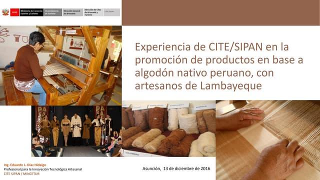 Experiencia del CITE/SIPAN en la promoción de productos en base a algodón nativo peruano, con artesanos de Lambayeque – Eduardo Díaz