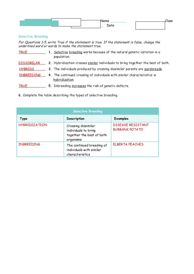 worksheet Genetic Variation Worksheet 15 1 3 study guide ans