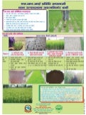 1504 -  Adopt SRI, Build a Country Self-sufficient in Rice