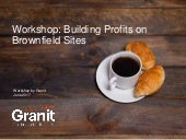 Building Profits on Brownfield Sites