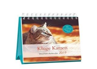 Kluge Katzen WochenKalender 2019 zum Aufstellen m Fotos u Zitaten inspirierende Texte auf d Ruckseiten Spiralbindung 166 x 158 cm Nice